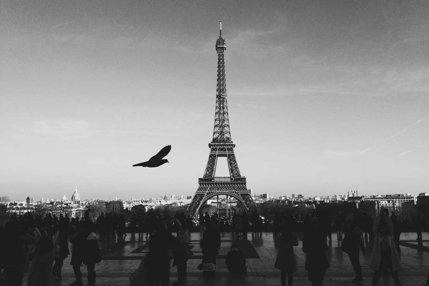 paris-blackwhite